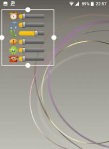 Volume Control Widget